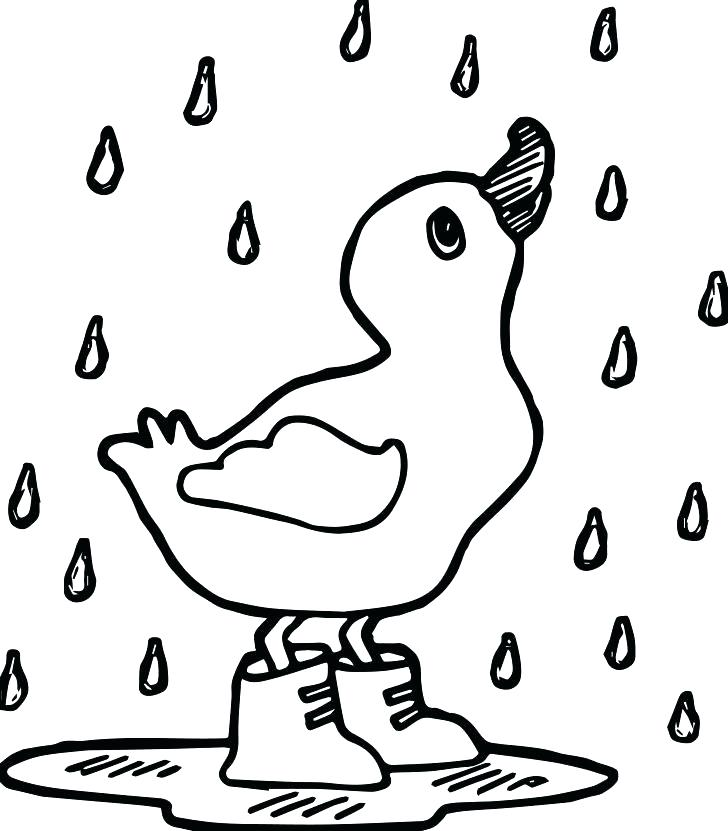 728x831 Duck Coloring Pages To Print Baby At The