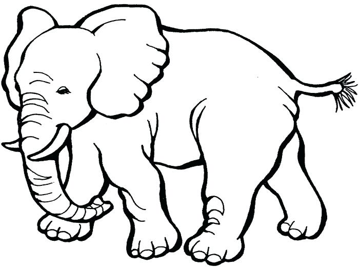 700x520 Coloring Pages Elephant Cute Baby Elephant Coloring Page Elephant