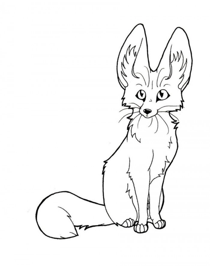 Baby Fox Drawing