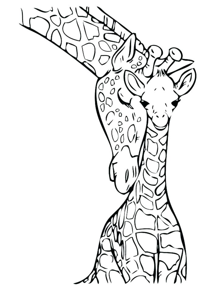 736x952 Coloring Pages Of Giraffes Giraffes Coloring Pages Giraffe