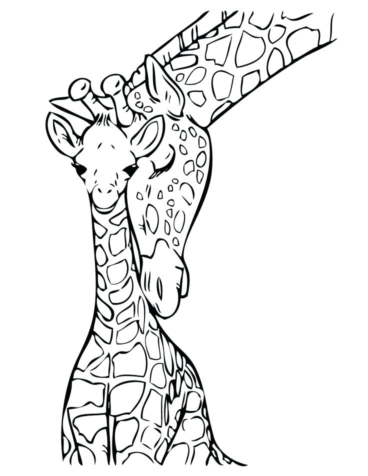 736x952 Giraffe Coloring Pages To Print Download Free Baby Giraffe Drawing