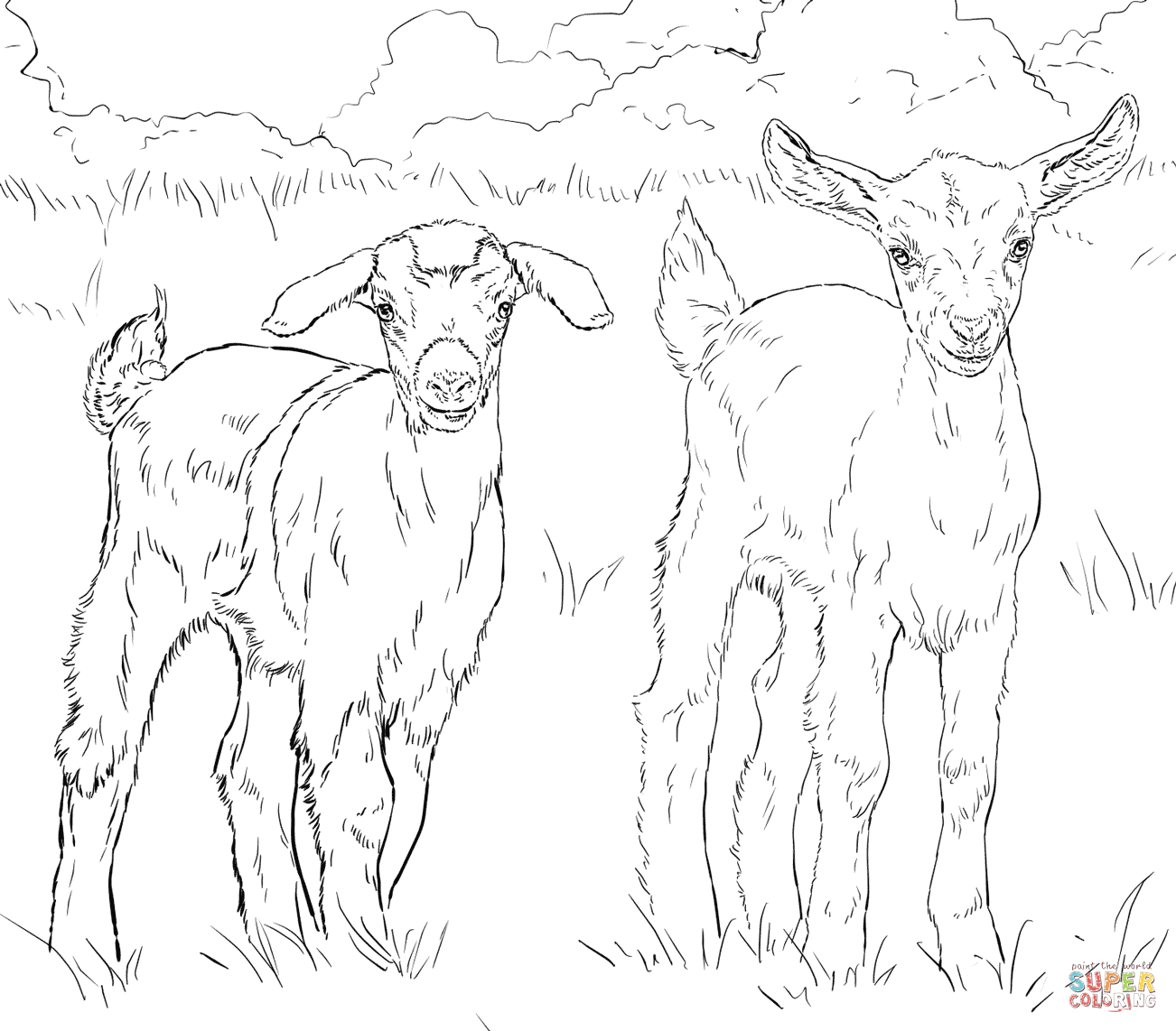 1302x1142 Baby Goat Coloring Pages Printable To Amusing Print Photo Goats