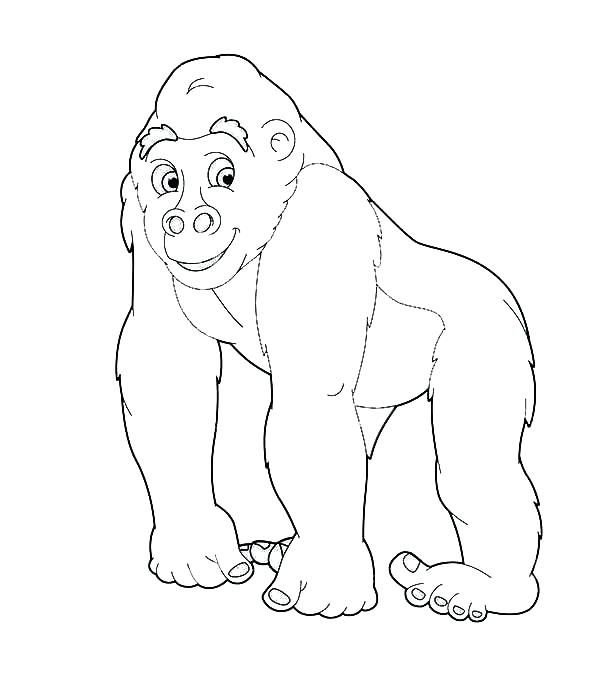 600x690 Gorilla Coloring Pages Going Safari With Gorilla Coloring Page