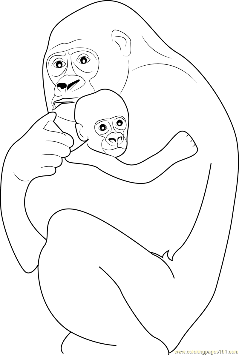 800x1190 Gorilla Hugs His Baby Coloring Page