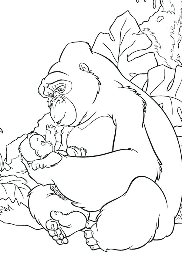 600x840 This Is Gorilla Coloring Page Images Baby Gorilla Coloring Pages