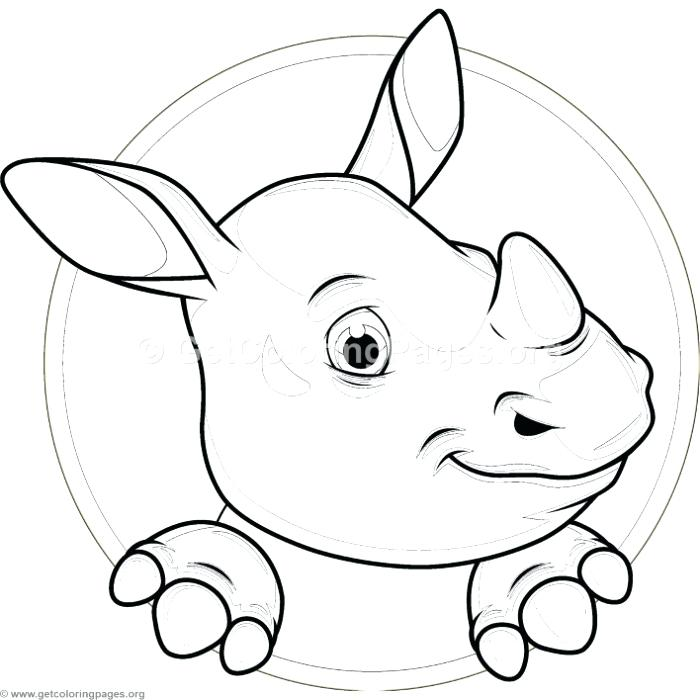 700x700 Baby Hippo Coloring Pages Inspirational Hippopotamus Coloring
