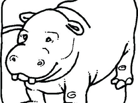 440x330 Top Rated Hippo Coloring Pages Pictures 4 Hippopotamus Animal