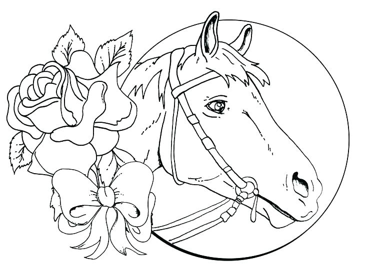 736x551 Horse Color Page Cute Horse Coloring Pages Coloring Pages Of Cute
