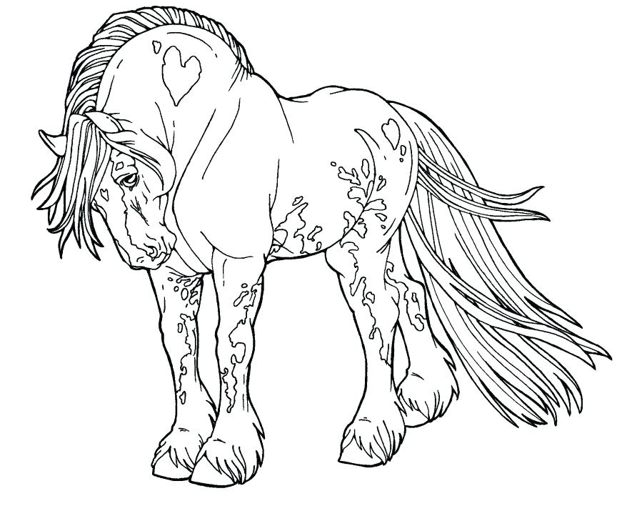 878x729 Horse Coloring Pages Printable Also Amusi On Baby Horses Coloring