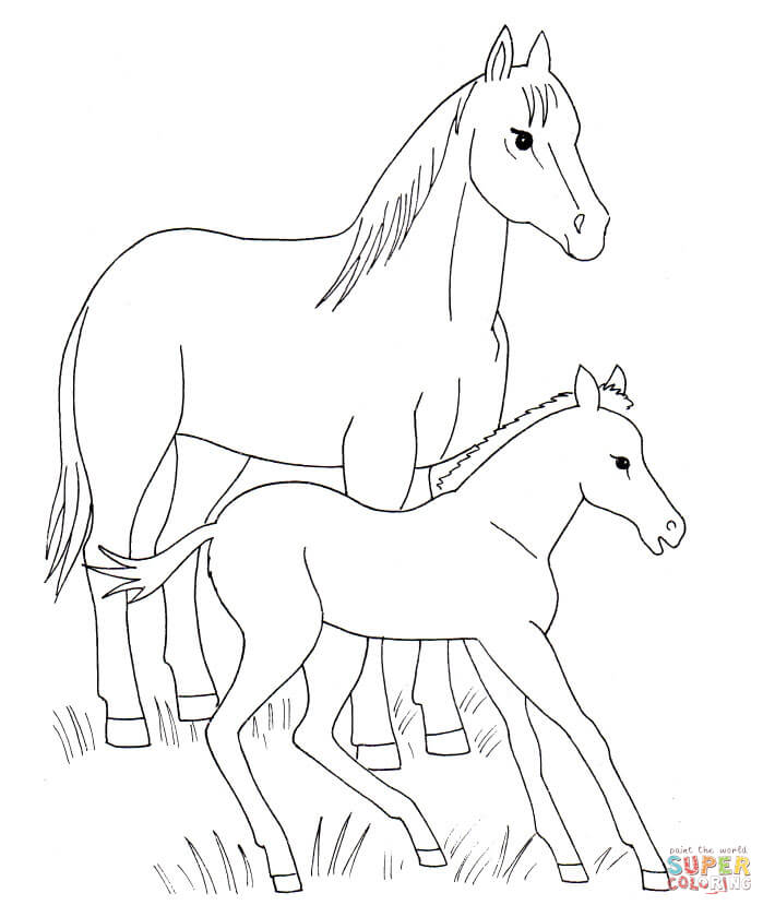 710x840 Horse And Foal Coloring Page Free Printable Coloring Pages
