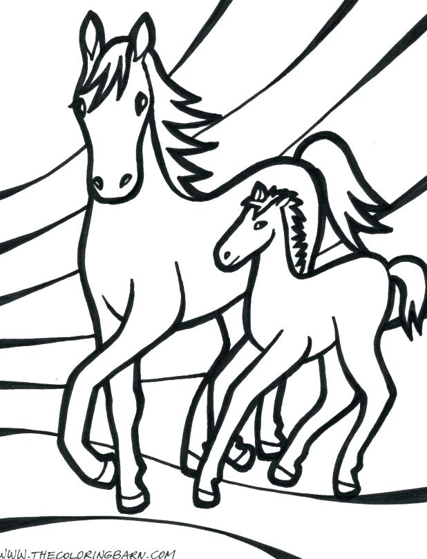 618x809 Horses Cl Cute Baby Horse Coloring Pages Sheets Seahorse Appealing