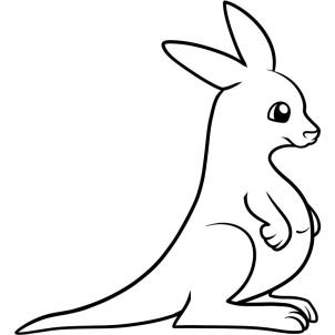 302x302 How To Draw How To Draw A Kangaroo For Kids