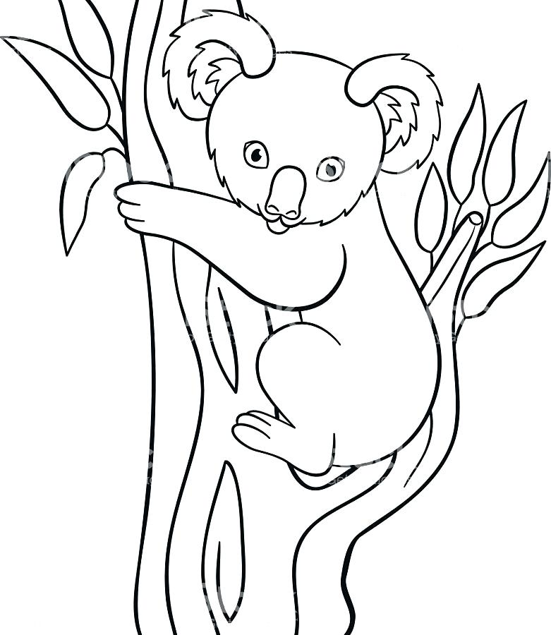 781x900 Coloring Pages For Kids Animals Cartoon Baby Koala Coloring Pages