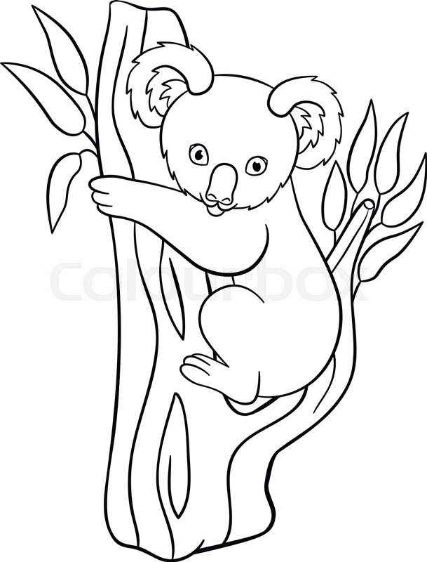 609x800 Coloring Pages. Little Cute Baby Koala Sits On The Tree Branch