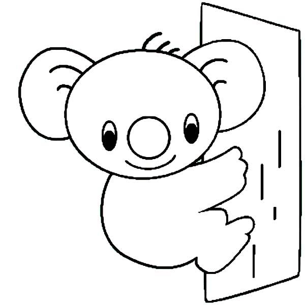 600x600 Cute Koala Bear Coloring Page Color Luna