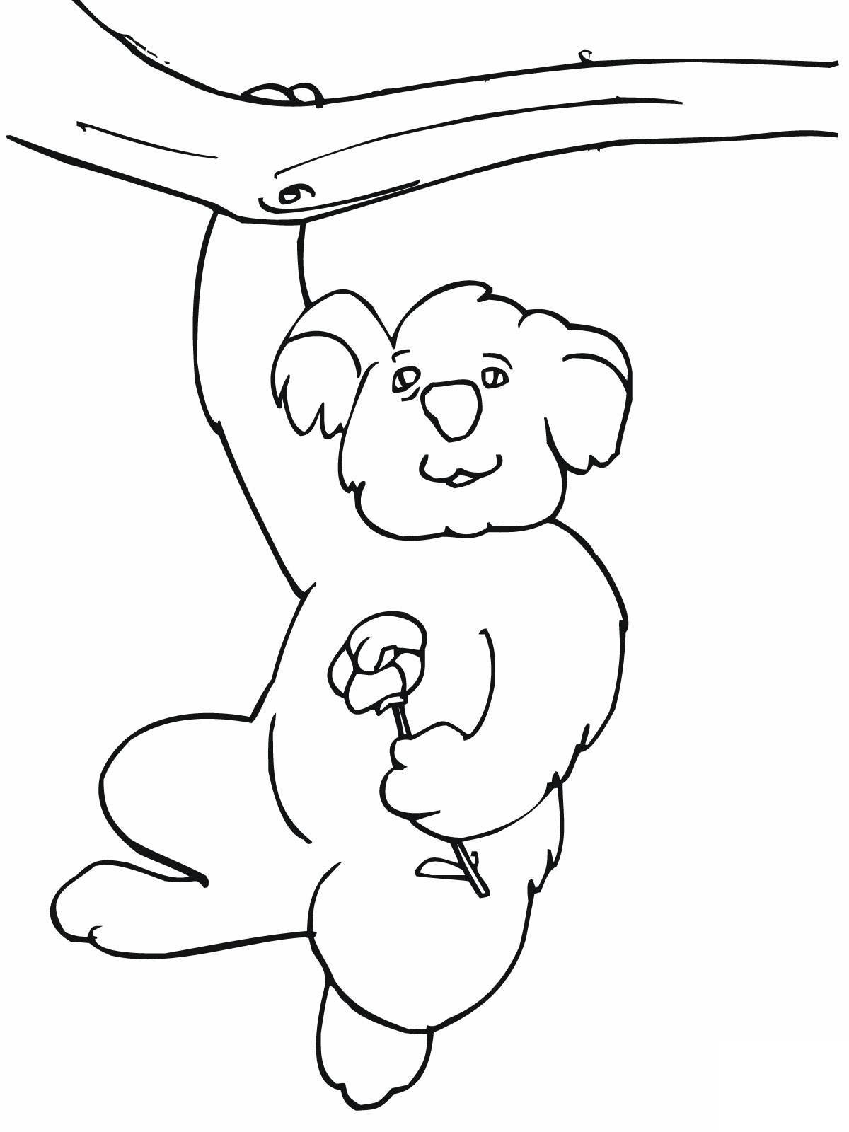 1200x1600 Free Printable Koala Coloring Pages For Kids