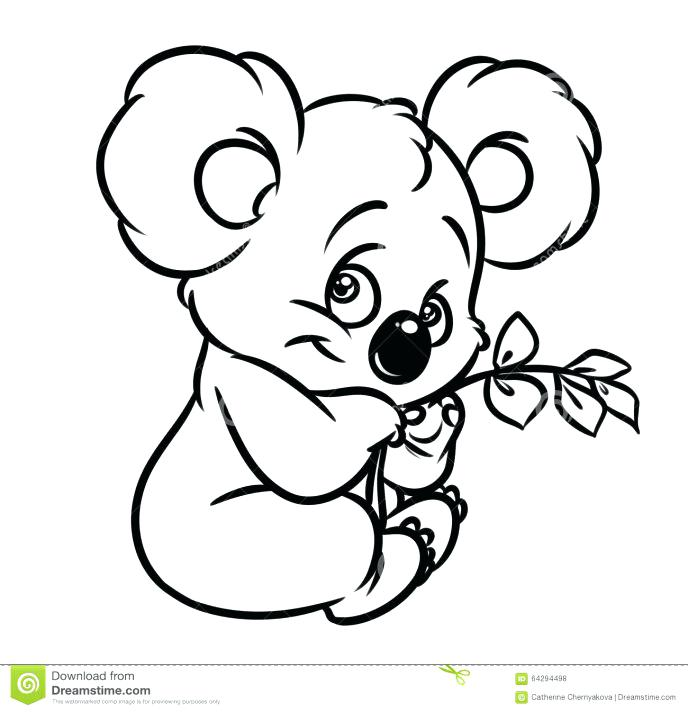 688x712 Top Rated Koala Coloring Pages Images Baby Koala Coloring Pages