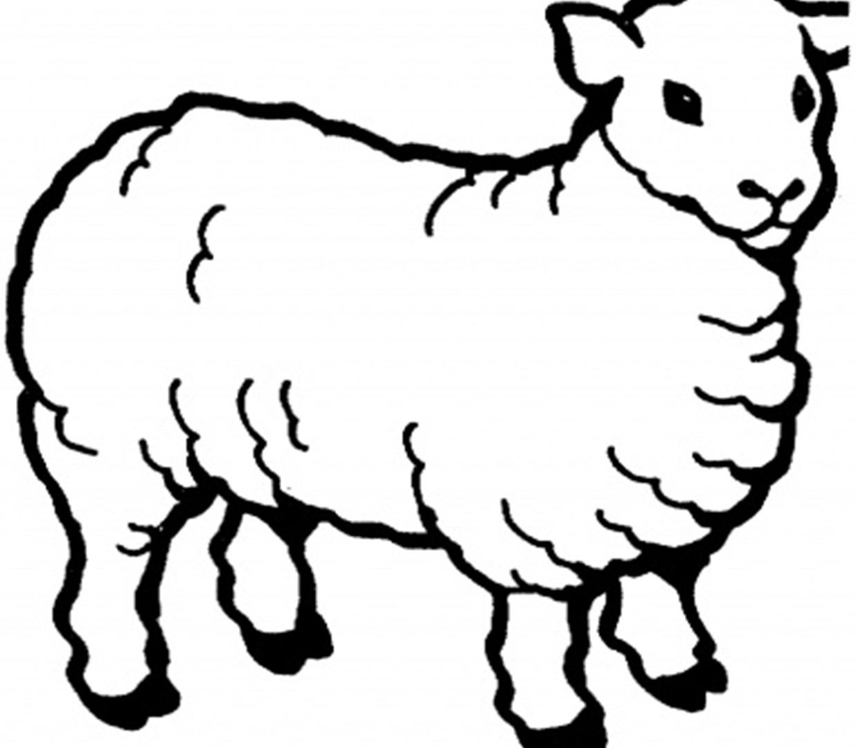 1236x1080 Cute Sheep Coloring Page Free Printable Pages Animals Minecraft