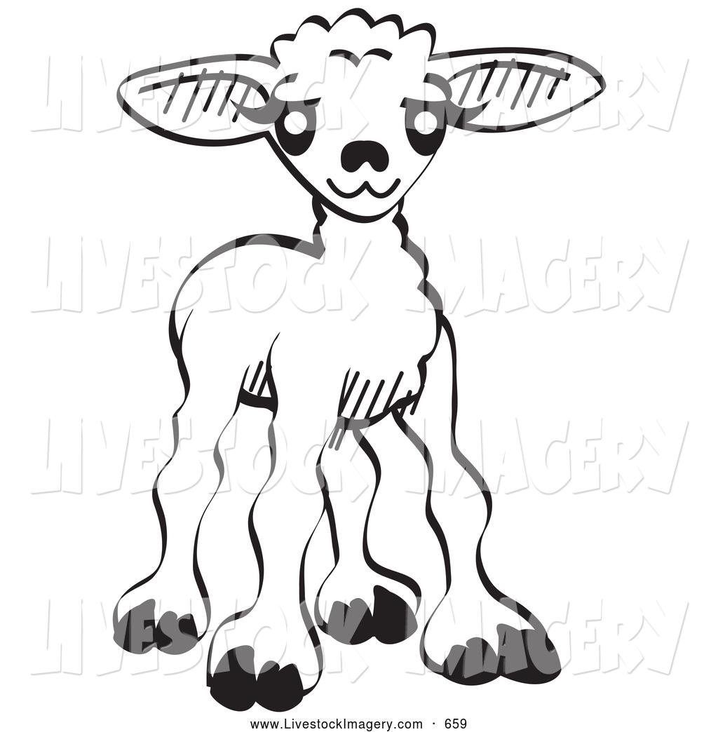 1024x1044 Royalty Free Lamb Stock Livestock Designs