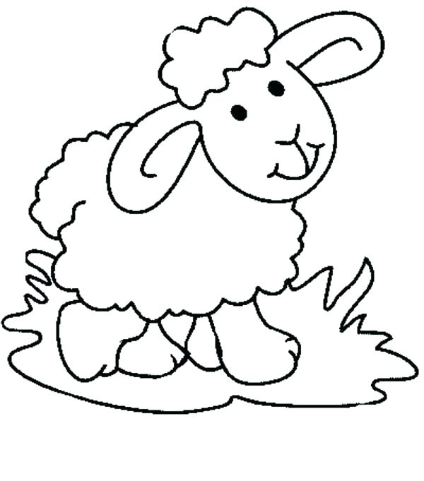 600x681 Sheep Coloring Picture Lamb Coloring Page Sheep Coloring Page Pdf