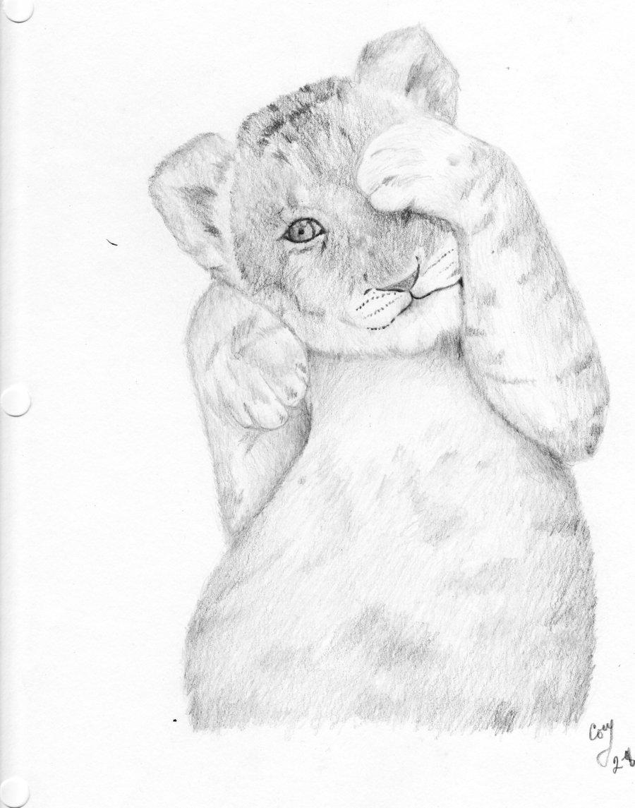 900x1145 Lion Cub By Cmitan