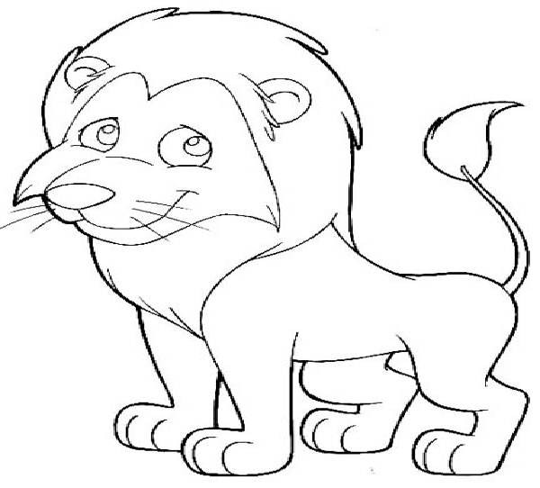 600x542 Mountain Lion Drawing For Kids