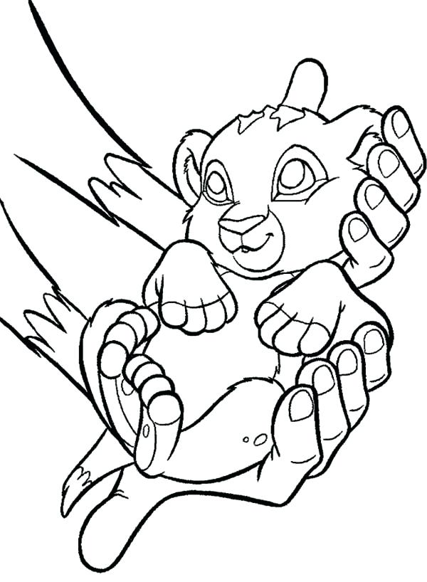 600x818 Baby Lion Coloring Pages Cortefocal.site