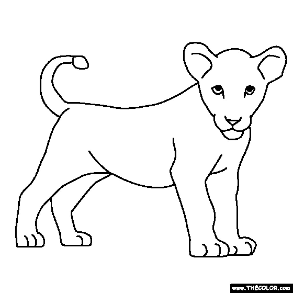 Baby Lion Drawing at GetDrawings | Free download