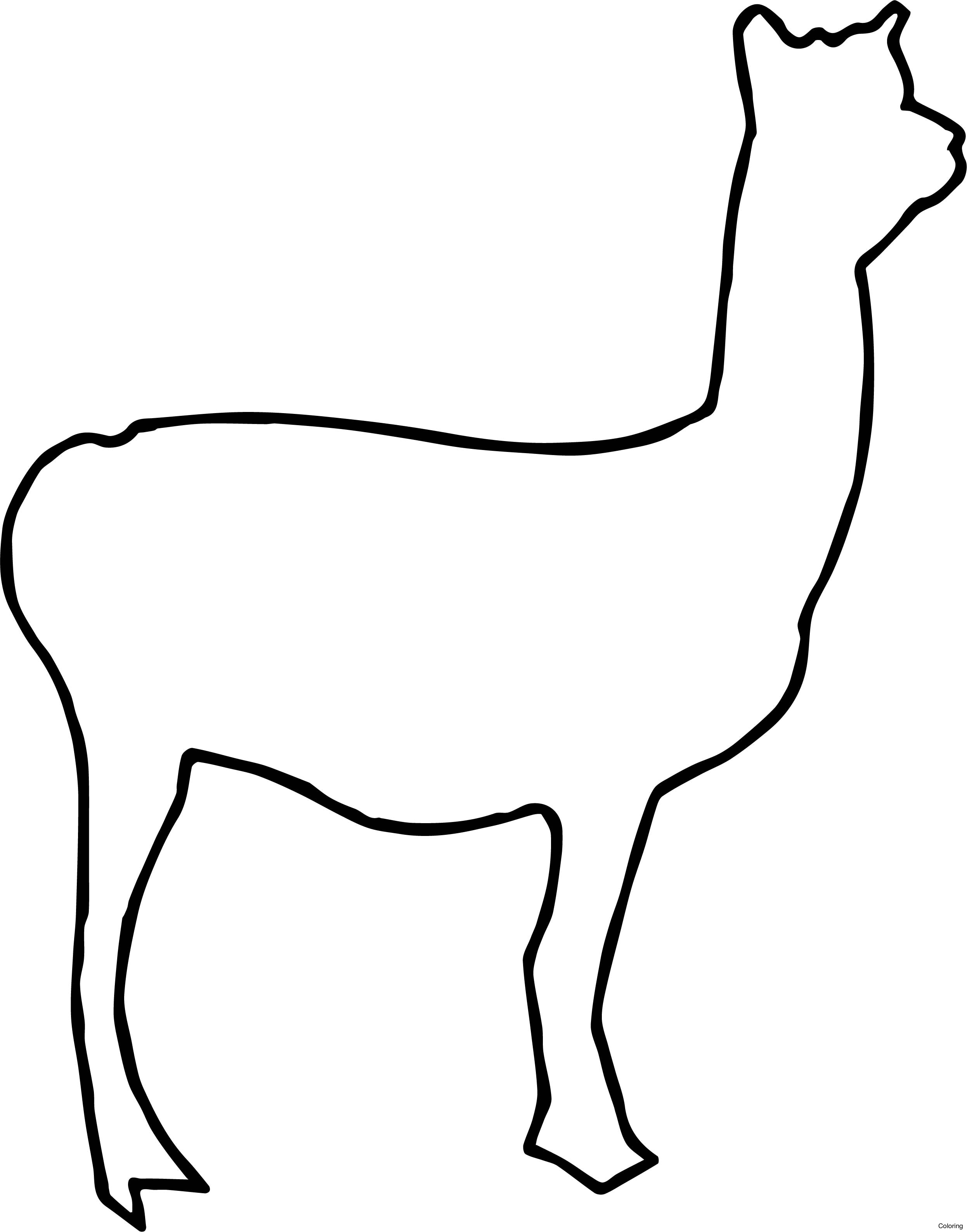 2492x3173 Print Coloring Pages Animal Llama 19f Baby Of For Diaiz