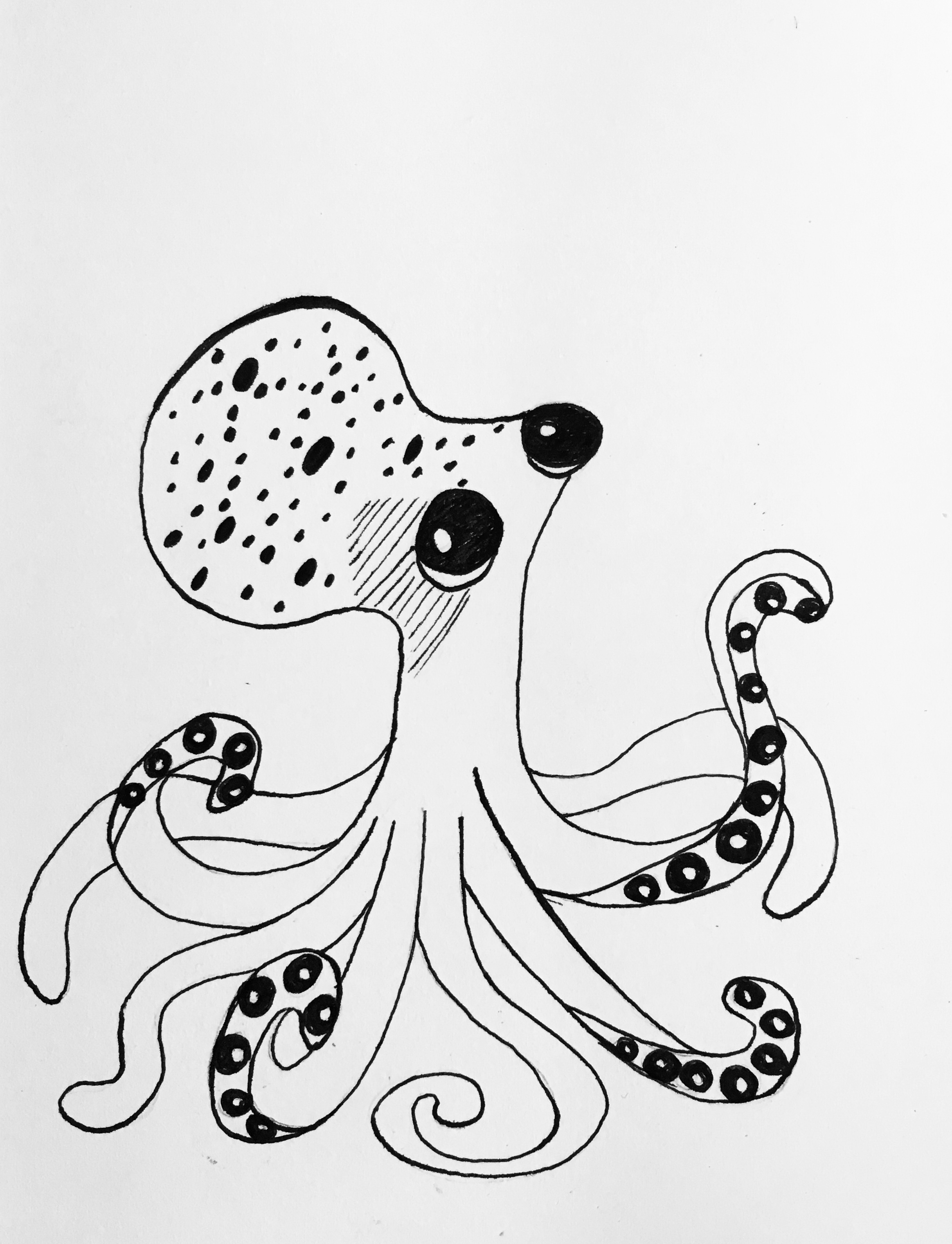 2433x3178 Day 6 Baby Octopus By Louisethesim