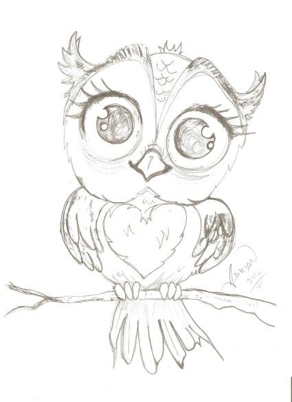 Baby Owl Drawing