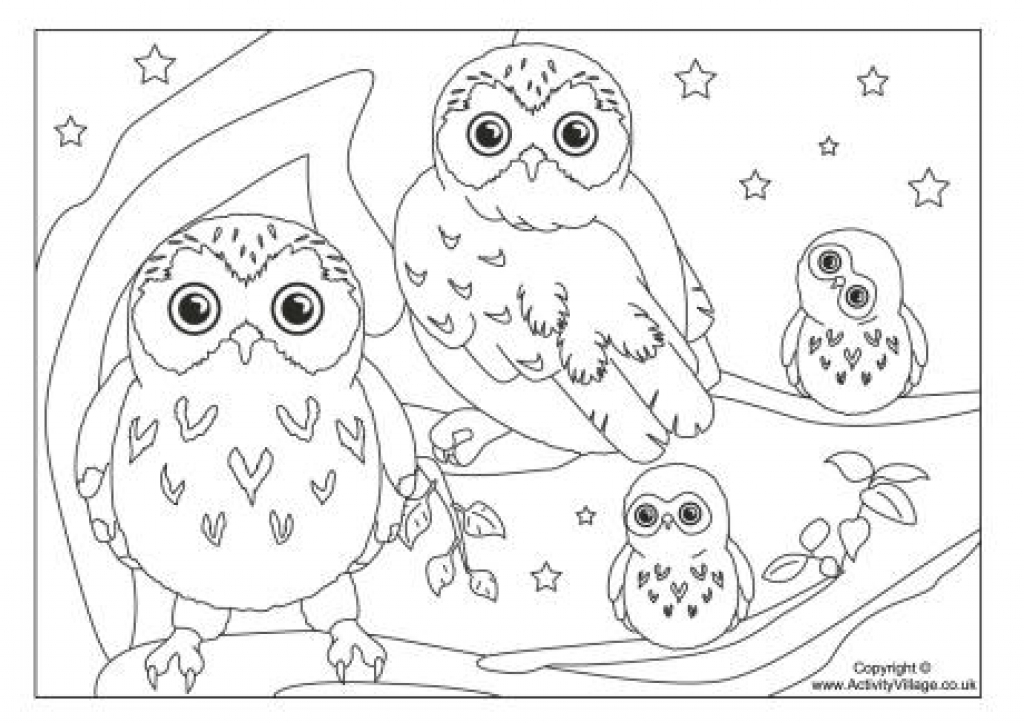 1024x723 Coloring Pages Of Owl Babies Ba Page Regarding Baby
