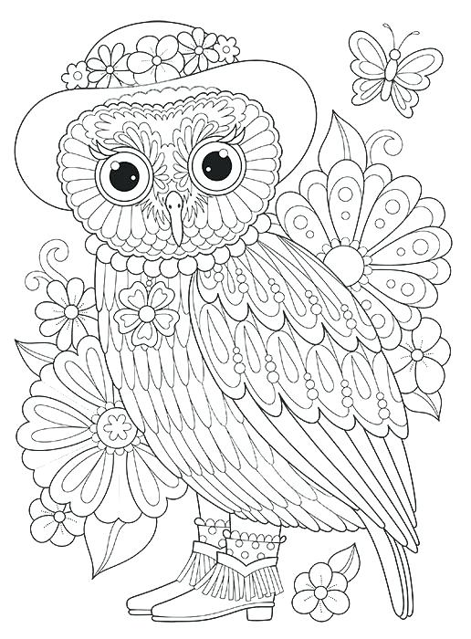 Baby Owl Drawing at GetDrawings.com | Free for personal use Baby Owl ...