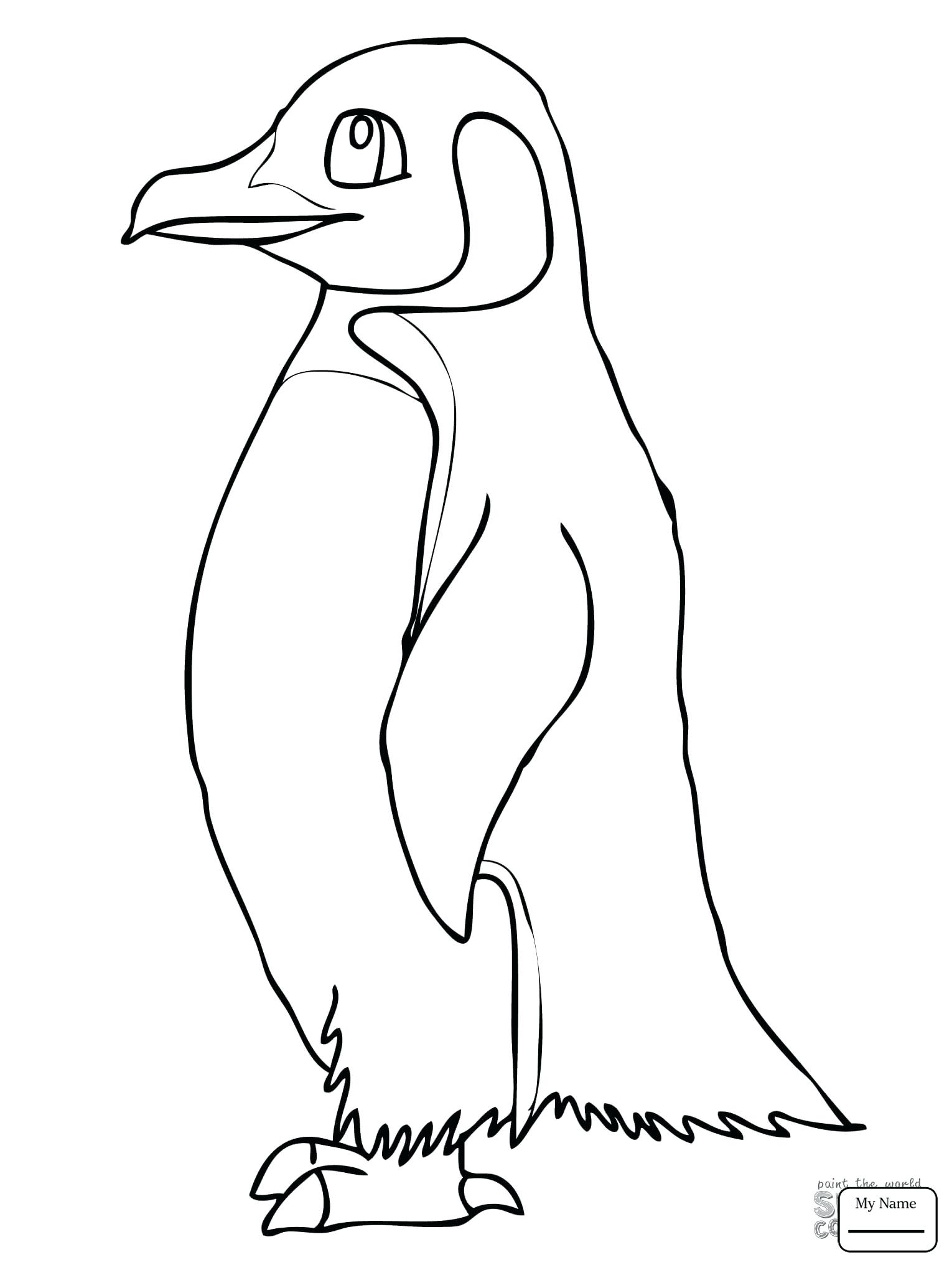 baby penguin drawing at getdrawings com free for personal use baby