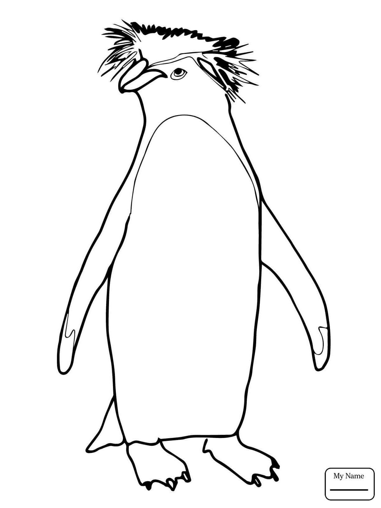 Baby Penguin Drawing at GetDrawings.com | Free for personal use Baby ...