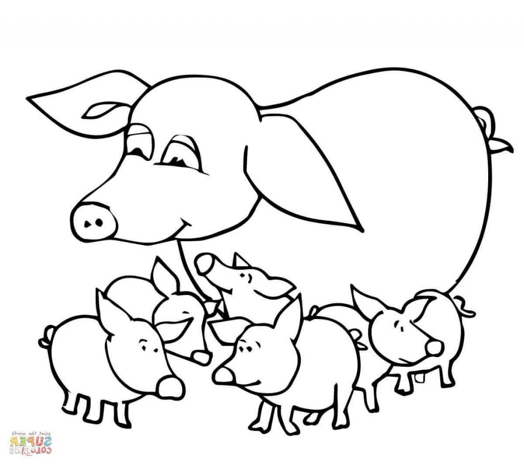 1024x908 Best 15 Baby Pigs And Mother Coloring Page Drawing