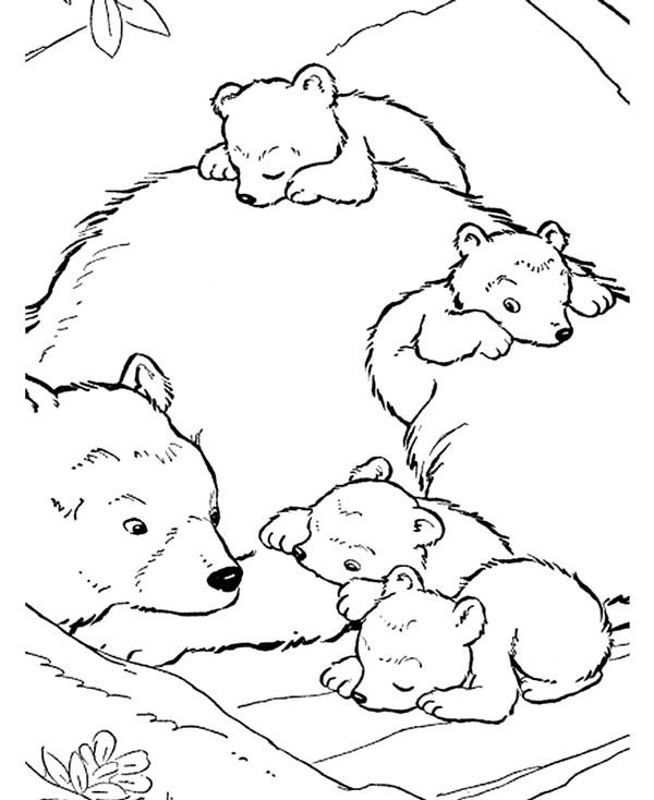 600x734 The Best Polar Bear Coloring Page Ideas On Artic