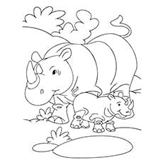 Baby Rhino Drawing
