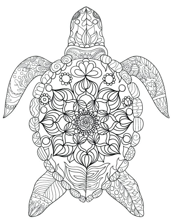 600x776 Coloring Pages Of Sea Turtles Turtle Coloring Pages Turtle