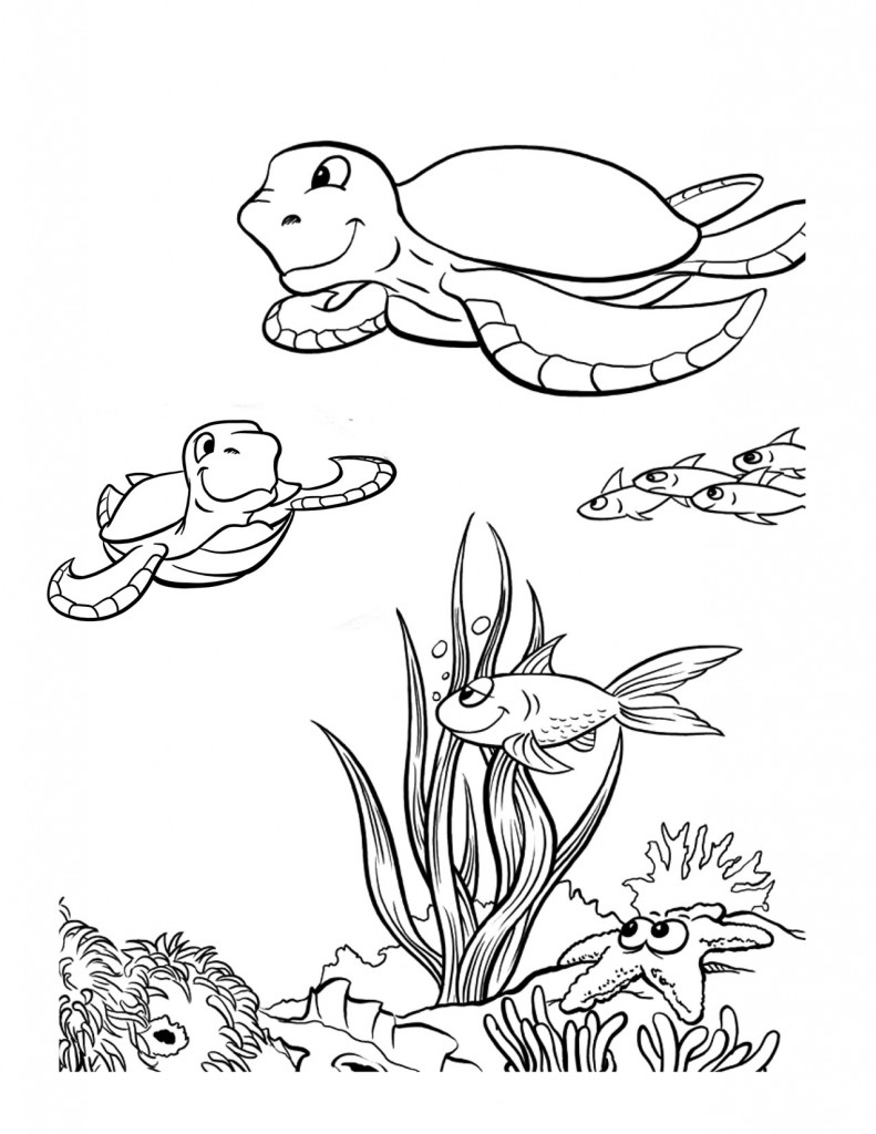 791x1024 Free Printable Sea Turtle Coloring Pages For Kids