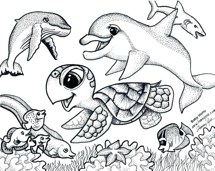 724x576 Ideas Sea Coloring Pages For Under The Sea Coloring Page Coloring