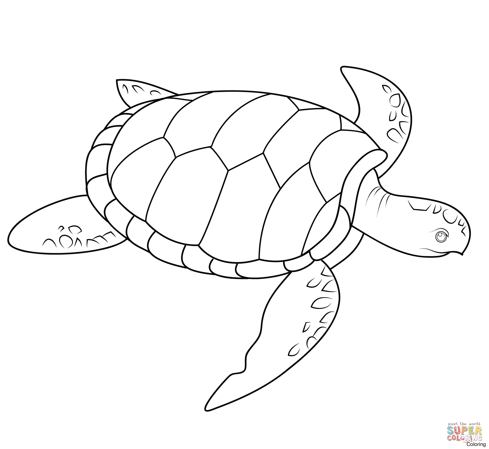 1612x1479 Sea Turtle Coloring Page Baby Pages Free Diaiz