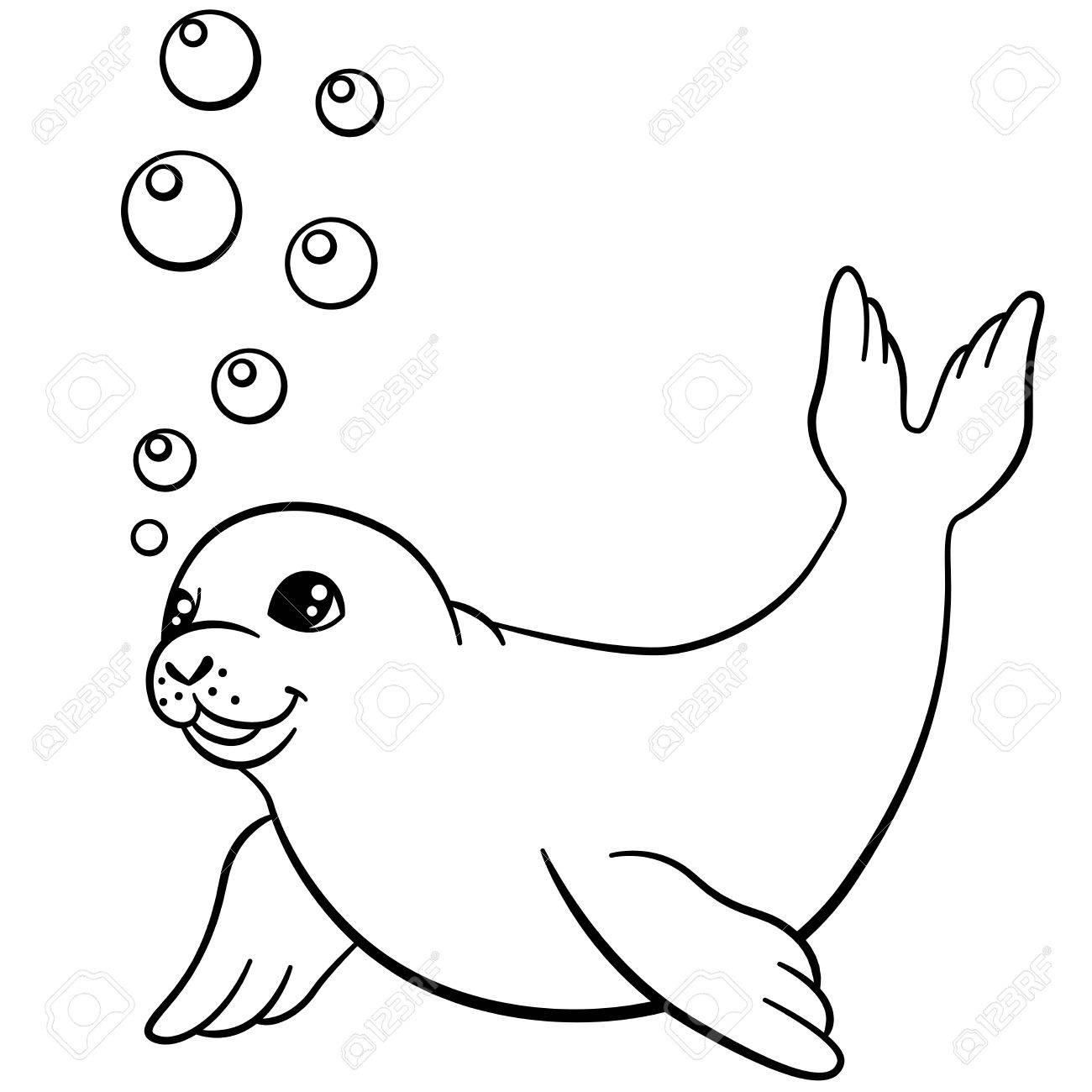 1300x1300 Coloring Pages. Little Cute Baby Seal Swims And Smiles. Royalty