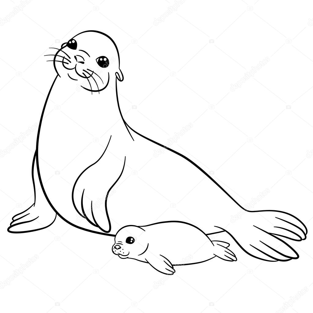 1024x1024 Coloring Pages. Mother Seal With Her Little Cute Baby. Stock