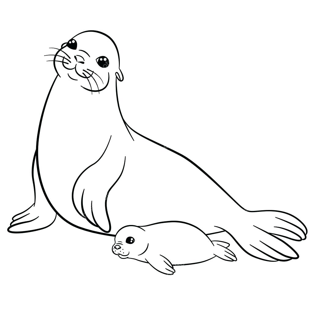 1024x1024 Coloring Mother Coloring Pages Seal With Her Little Cute Baby