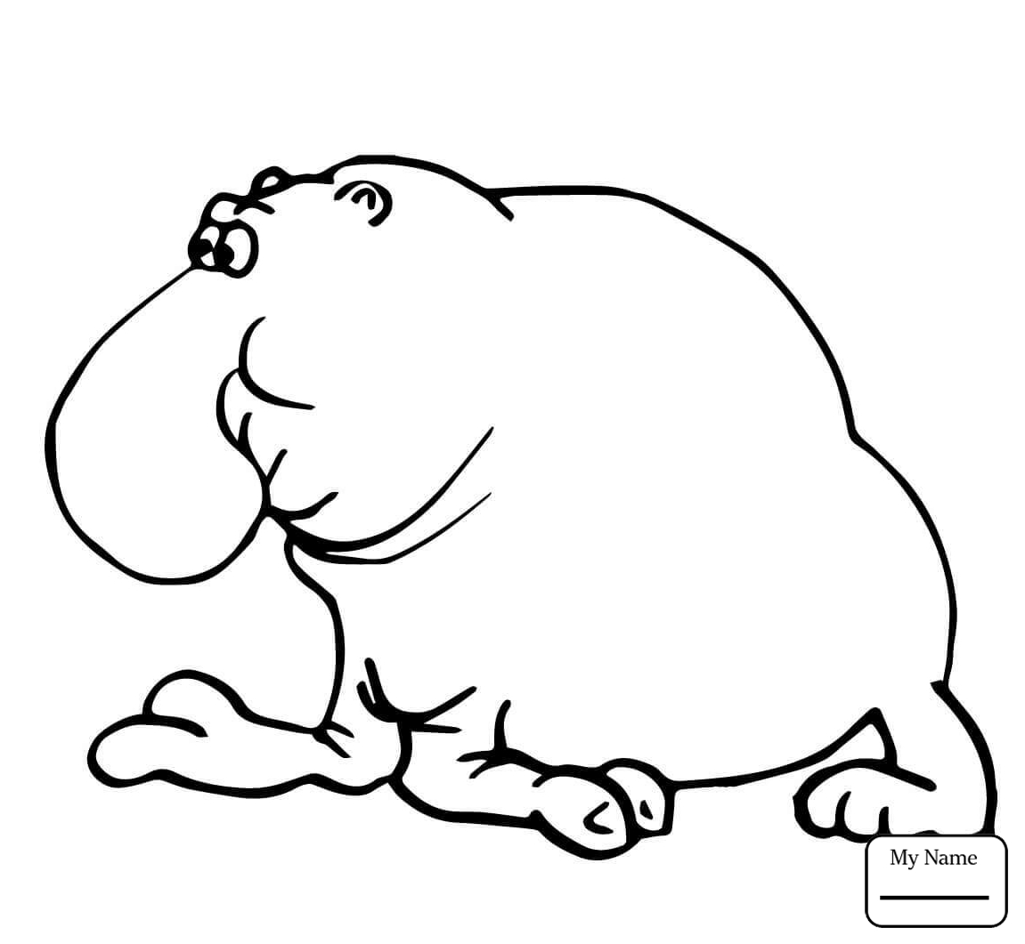 Baby Seal Drawing at GetDrawings.com | Free for personal use Baby ...