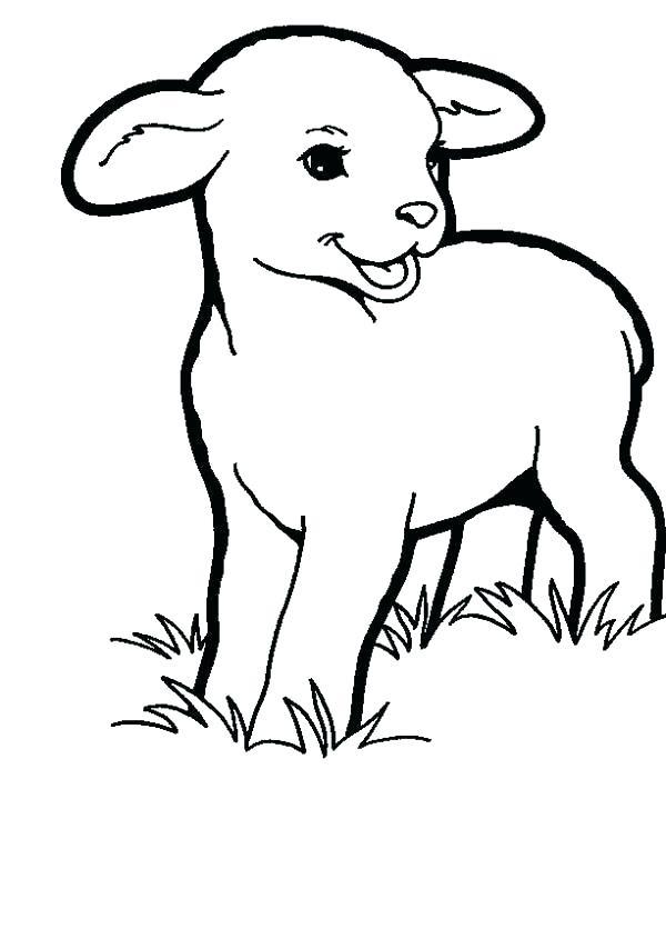 600x845 Good Coloring Page Lamb Fee Pin Sheep Colouring 2 Sheets Pages