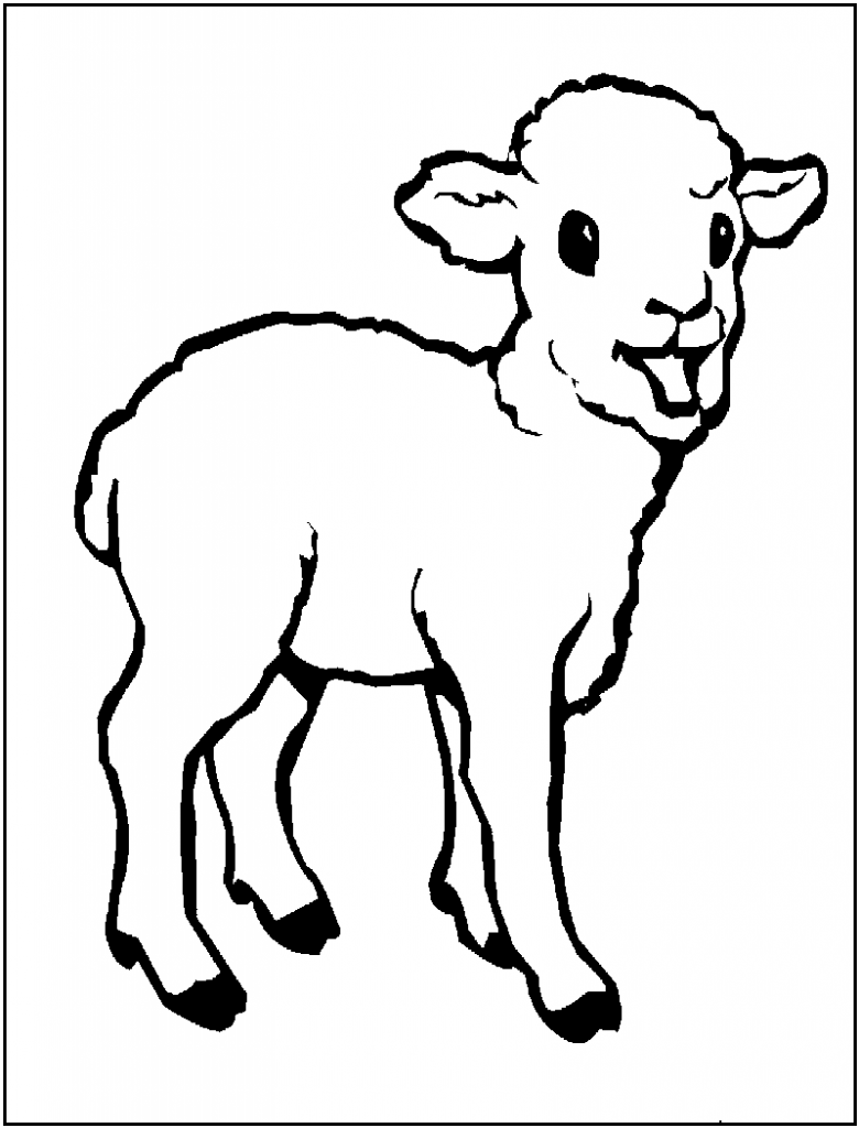 780x1024 Sheep Colouring Pages For Kids