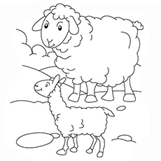 230x230 Top 25 Free Printable Sheep Coloring Pages Online