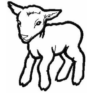300x300 Wildlife Animal Machine Embroidery Designs